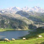 Picos de Europa | Turismo rural en el Parque Nacional de los Picos de Europa | Asturias, Cantabria y Castilla Y León