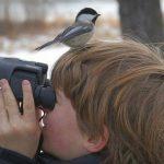 Consejos para conseguir unas escapadas familiares excepcionales con niños. Disfruta de la naturaleza con los más pequeños: bonitos recuerdos de su infancia