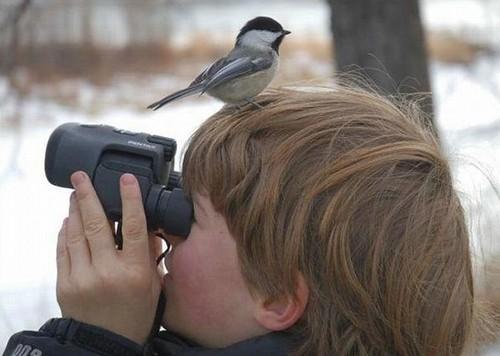 Infancia y naturaleza
