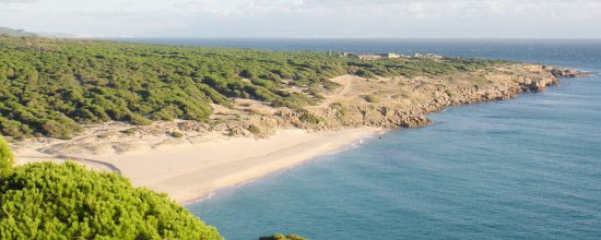 De barbate a tarifa playas de zahara para un fin de for Camping jardin de las dunas tarifa