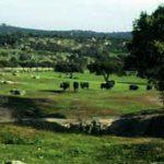 Viaje de fin de semana en la Sierra de Andújar (Jaén)