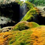 Parque Natural Chera-Sot de Chera | Paisajes insólitos