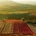 La Rioja | Viajes románticos de enoturismo, naturaleza y mucho más