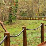 Reserva Natural Integral de Muniellos, turismo activo en Asturias